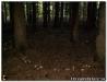 Herbstwanderung-2010-10.jpg
