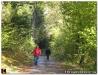 Herbstwanderung-2010-24.jpg