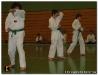TaekwondoPruefung2011-14.jpg