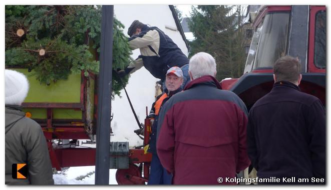 Weihnachtsbaumverkauf-2010-0015.jpg