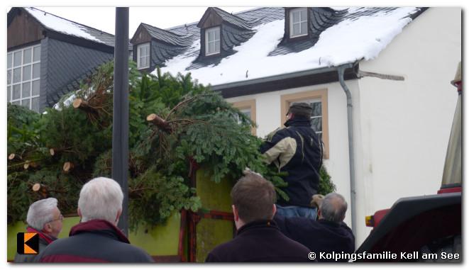 Weihnachtsbaumverkauf-2010-0018.jpg