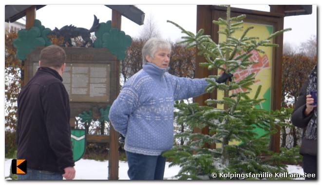 Weihnachtsbaumverkauf-2010-0027.jpg