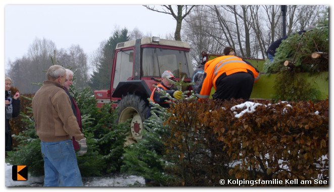 Weihnachtsbaumverkauf-2010-0029.jpg
