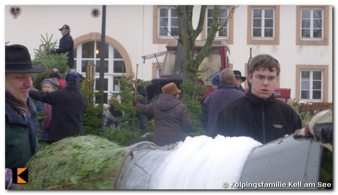 Weihnachtsbaumverkauf-2010-0059.jpg