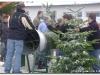 Weihnachtsbaumverkauf-2010-0039.jpg