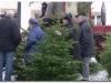 Weihnachtsbaumverkauf-2010-0057.jpg