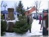 Weihnachstbaumverkauf200807.jpg
