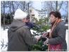 Weihnachstbaumverkauf200808.jpg
