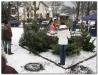 weihnachtsbaumverkauf200861.jpg