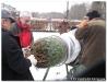 weihnachtsbaumverkauf200870.jpg