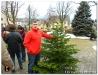 Weihnachtsbaumverkauf_201208.jpg
