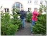 Weihnachtsbaumverkauf_201209.jpg