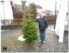Weihnachtsbaumverkauf_201211.jpg
