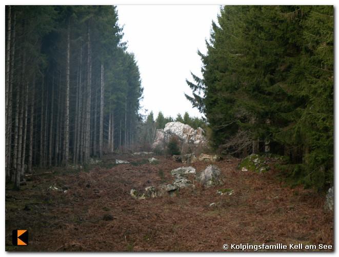 Winterwanderung-2011-17.jpg