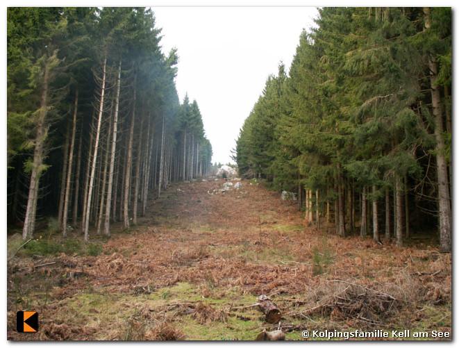 Winterwanderung-2011-18.jpg
